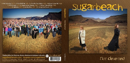 Sugarbeach's new album cover